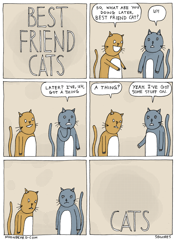 BEST FRIEND CATS