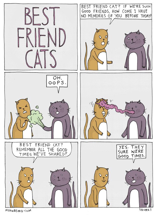 Best Friend Cats part 13
